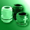 polynorm-haupa-green-0319